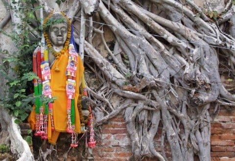 Detail d'un vieux mur - Ayutthaya
