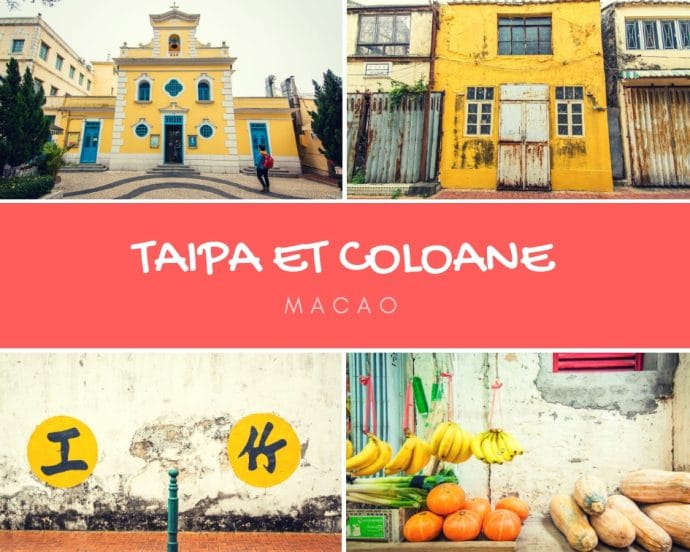 taipa et coloane cover