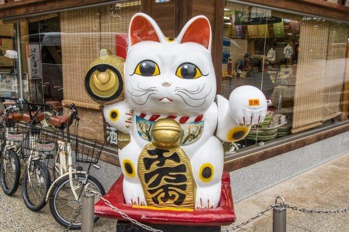 chat porte bonheur amanoshidate japon