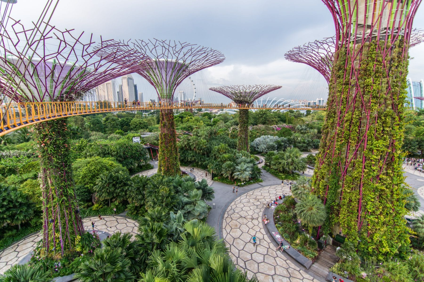 gardens in the bay - singapour