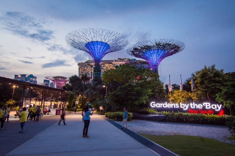gardens by the bay nuit - singapour