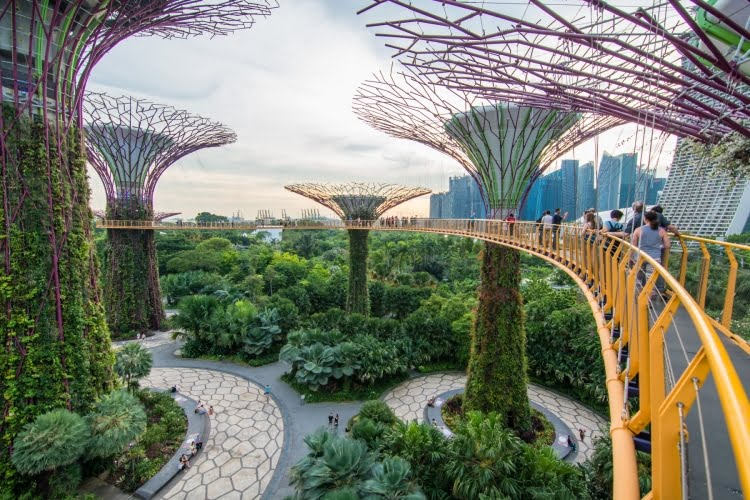 ocbc skyway gardens by the bay singapour