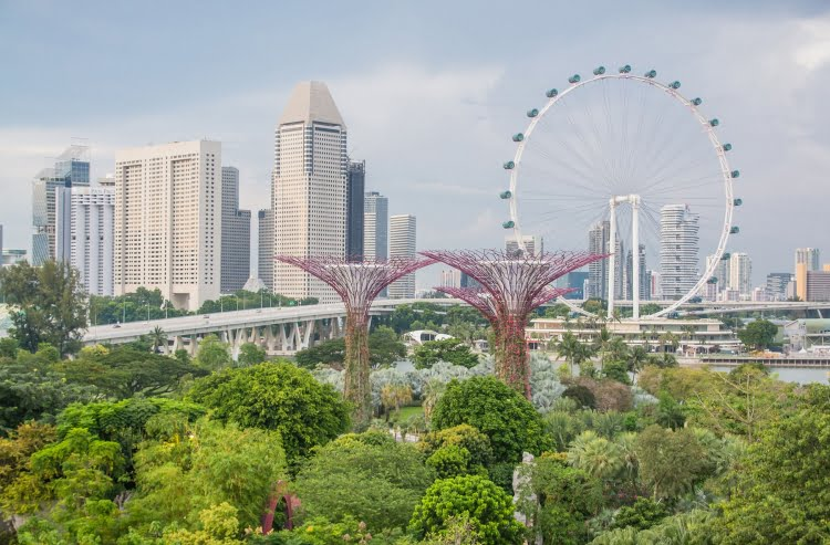 singapour depuis gardens by the bay