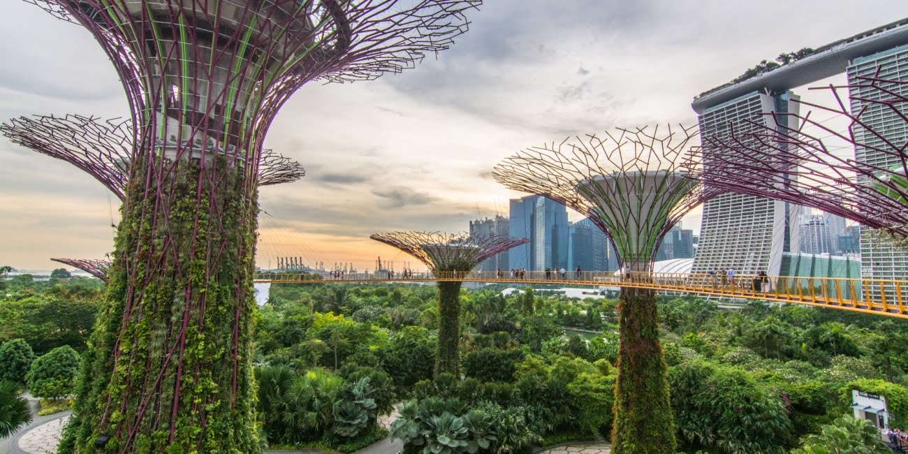 singapour ville verte gardens by the bay