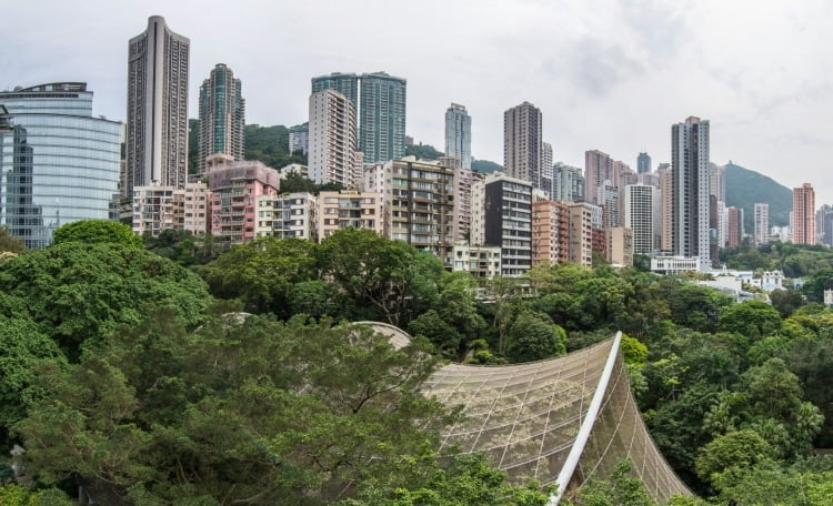 vantage point - hong kong park