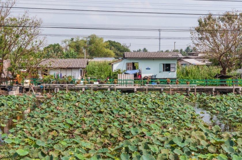 paysage en prenant train entre bangkok et nakhon pathom